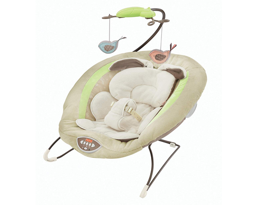 Fisher-Price Deluxe Bouncer 500x400